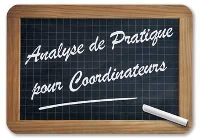 conaultan en analyse de la pratique