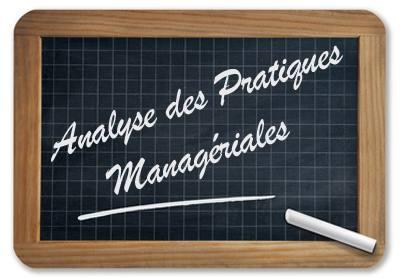 analyse des pratiques managériales